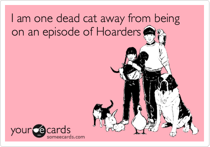 I am one dead cat away from being on an episode of Hoarders