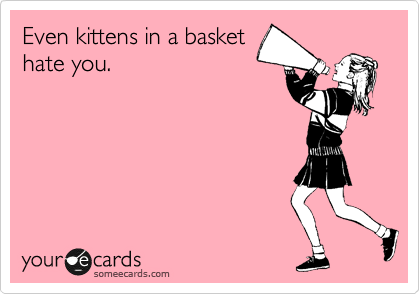 Even kittens in a basket hate you.