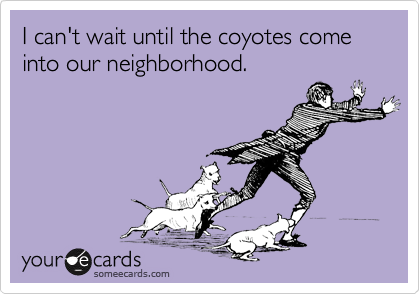 I can't wait until the coyotes come into our neighborhood.