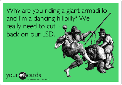 Why are you riding a giant armadillo and I'm a dancing hillbilly? We really need to cut back on our LSD.