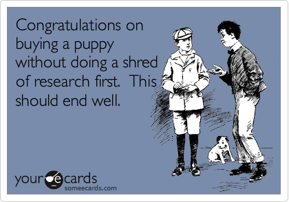 Congratulations on buying a puppy without doing a shred of research first.  This should end well.