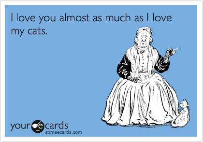 I love you almost as much as I love my cats.