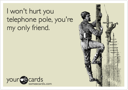 I won't hurt you telephone pole, you're my only friend.