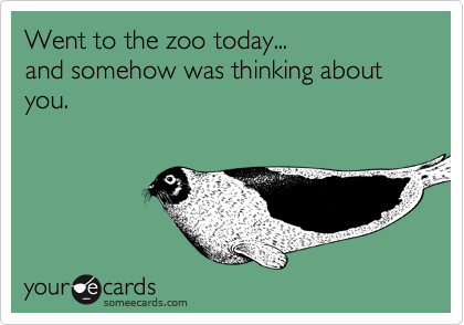 Went to the zoo today...  and somehow was thinking about you.