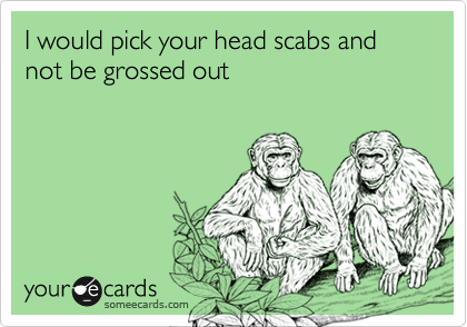 I would pick your head scabs and not be grossed out