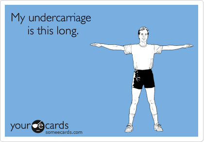 My undercarriage       is this long.