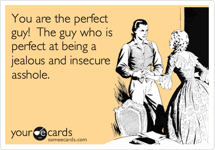You are the perfect guy!  The guy who is perfect at being a jealous and insecure asshole.