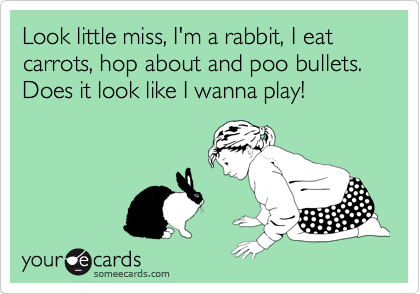 Look little miss, I'm a rabbit, I eat carrots, hop about and poo bullets. Does it look like I wanna play!