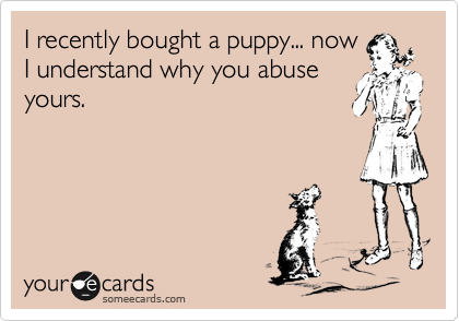 I recently bought a puppy... now I understand why you abuse yours.