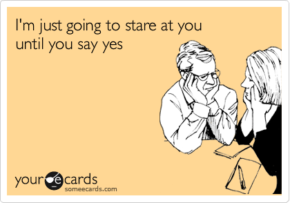 I'm just going to stare at you  until you say yes