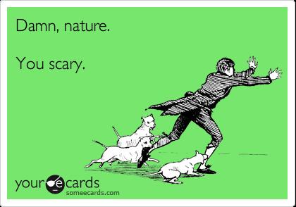 Damn, nature.  You scary.