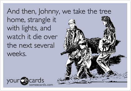 And then, Johnny, we take the tree home, strangle it with lights, and watch it die over the next several weeks.
