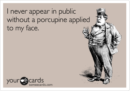 I never appear in public without a porcupine applied to my face.