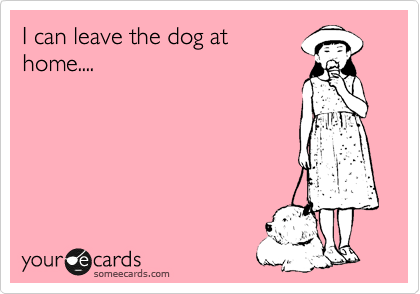 I can leave the dog at home....