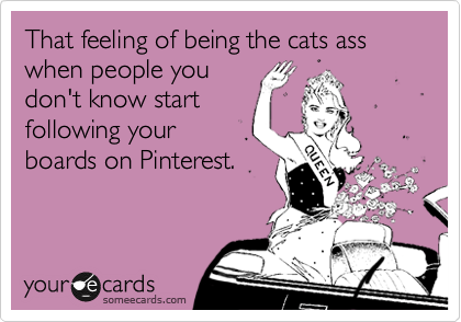 That feeling of being the cats ass when people you don't know start following your boards on Pinterest.