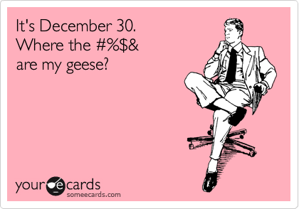 It's December 30.  Where the %23%%24&  are my geese?