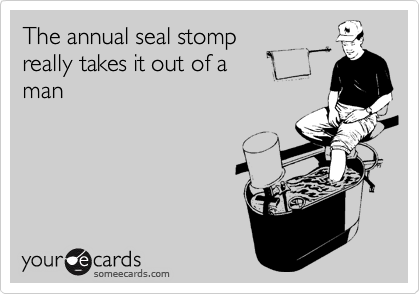 The annual seal stomp really takes it out of a man