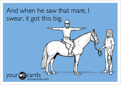 And when he saw that mare, I swear, it got this big.