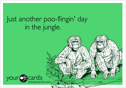 Just another poo-flingin' day          in the jungle.
