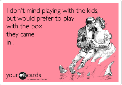 I don't mind playing with the kids, but would prefer to play with the box  they came in !