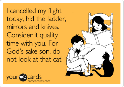I cancelled my flight  today, hid the ladder, mirrors and knives. Consider it quality time with you. For God's sake son, do  not look at that cat!