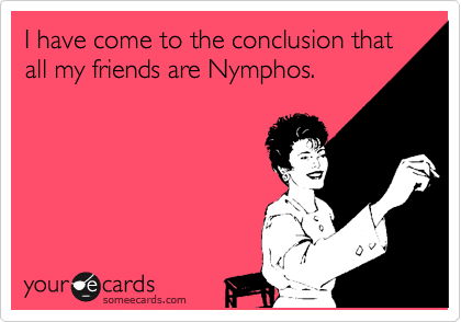 I have come to the conclusion that all my friends are Nymphos.