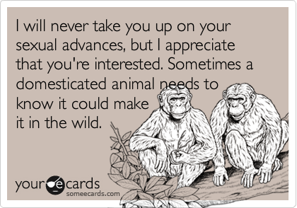 I will never take you up on your sexual advances, but I appreciate that you're interested. Sometimes a domesticated animal needs to know it could make  it in the wild.