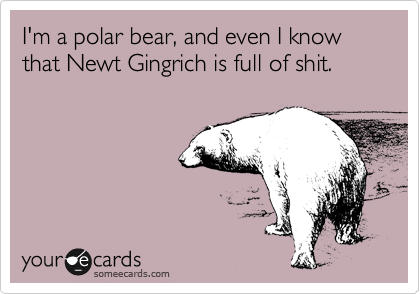 I'm a polar bear, and even I know that Newt Gingrich is full of shit.