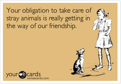 Your obligation to take care of stray animals is really getting in the way of our friendship.