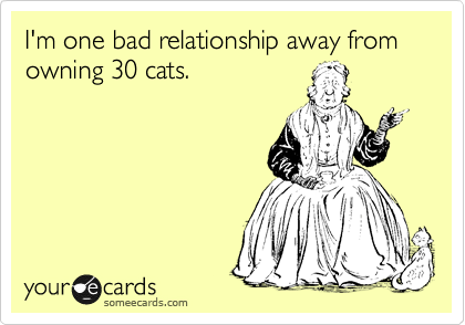 I'm one bad relationship away from owning 30 cats.