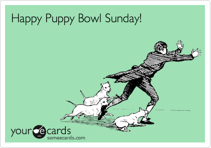 Happy Puppy Bowl Sunday!
