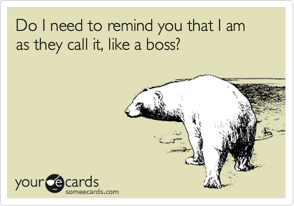Do I need to remind you that I am as they call it, like a boss?