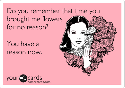 Do you remember that time you brought me flowers for no reason?  You have a reason now.