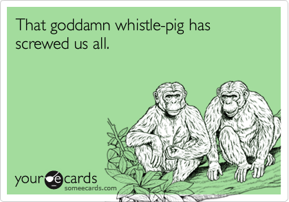 That goddamn whistle-pig has screwed us all.