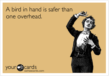 A bird in hand is safer than one overhead.