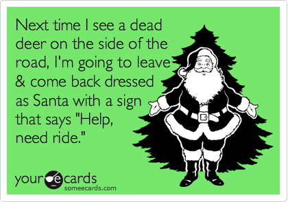 """Next time I see a dead deer on the side of the road, I'm going to leave & come back dressed as Santa with a sign that says """"Help, need ride."""""""