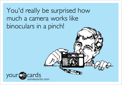 You'd really be surprised how much a camera works like binoculars in a pinch!