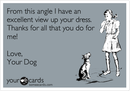 From this angle I have an excellent view up your dress. Thanks for all that you do for me!  Love, Your Dog