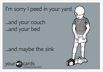 I'm sorry I peed in your yard.   ...and your couch   ...and your bed      ...and maybe the sink