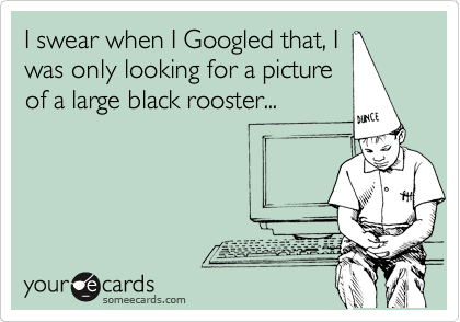 I swear when I Googled that, I was only looking for a picture of a large black rooster...