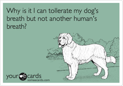 Why is it I can tollerate my dog's breath but not another human's breath?