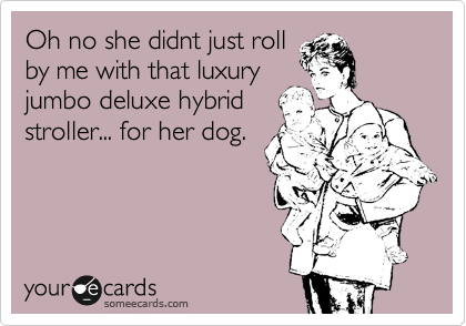 Oh no she didnt just roll by me with that luxury  jumbo deluxe hybrid  stroller... for her dog.