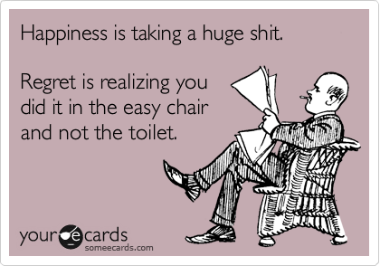 Happiness is taking a huge shit.  Regret is realizing you did it in the easy chair and not the toilet.