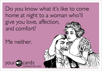 Do you know what it's like to come home at night to a woman who'll  give you love, affection, and comfort?  Me neither.