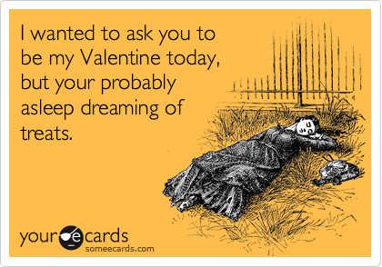 I wanted to ask you to be my Valentine today, but your probably asleep dreaming of treats.