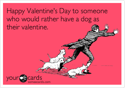 Happy Valentine's Day to someone who would rather have a dog as their valentine.