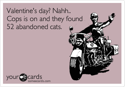 Valentine's day? Nahh.. Cops is on and they found 52 abandoned cats.