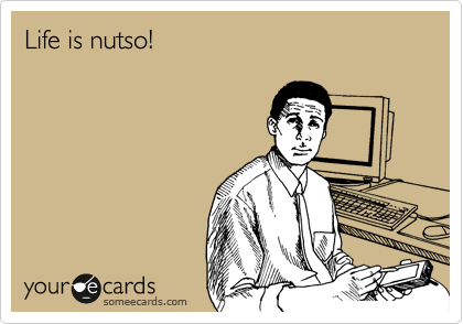 Life is nutso!