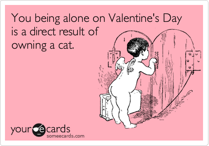You being alone on Valentine's Day is a direct result of owning a cat.