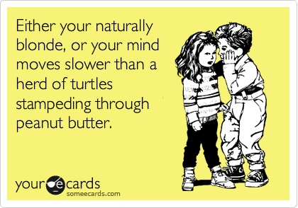 Either your naturally blonde, or your mind moves slower than a herd of turtles stampeding through peanut butter.